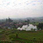 Penginapan Pondok Ngaso Ciwidey Bandung